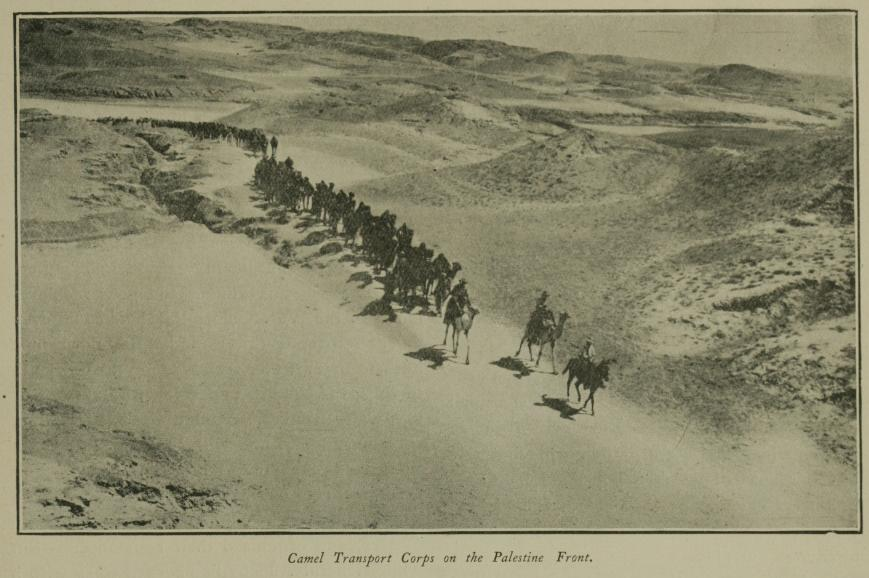 Palestine_Camel_Transport