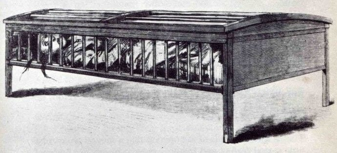 asylum cage